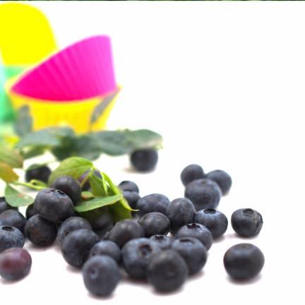 Myrtille corymbosum  Lucky Berry®