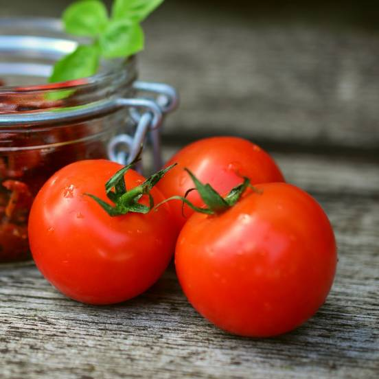 Graines de Tomate Ferline HF1