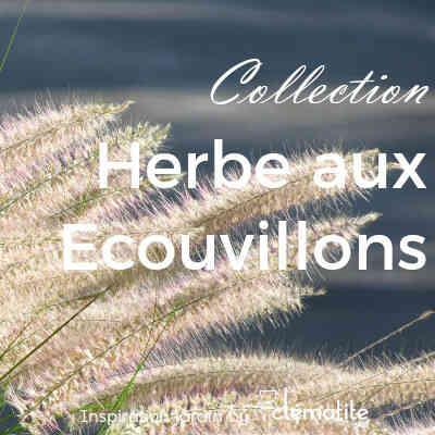 Collection Herbe aux écouvillions