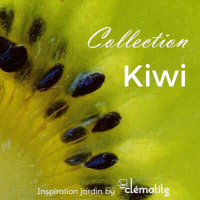 Collection Kiwi