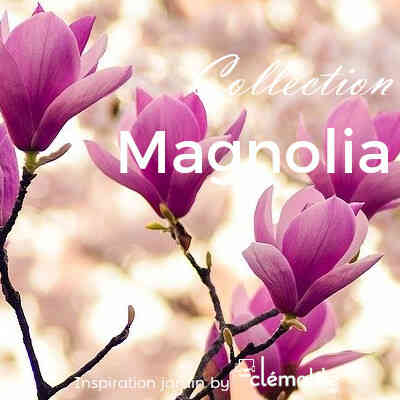 Collection Magnolia