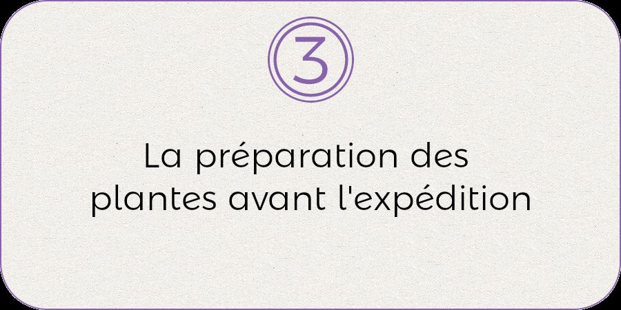 3- La préparation des plantes avant l'expédition