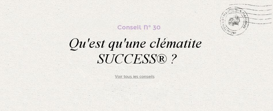 Qu-est qu'une clématite SUCCESS® ?