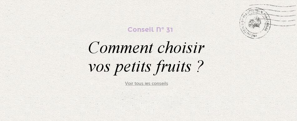 31 - Comment choisir mon petit fruit