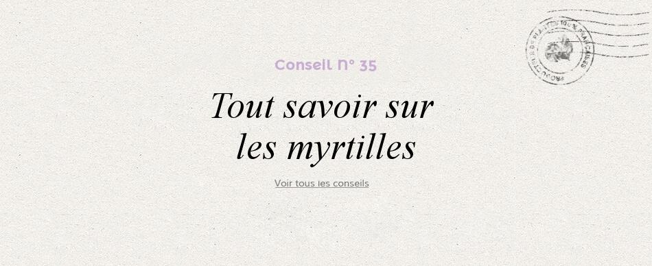 35 - Tout savoir sur les myrtilles