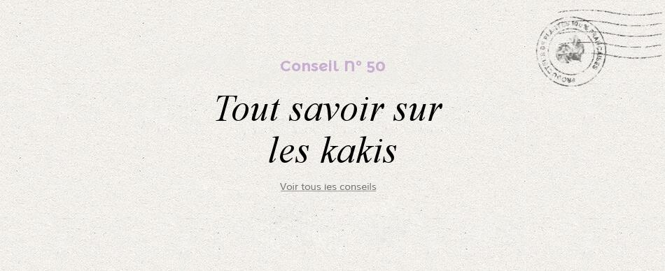 56 - Tout savoir sur les kakis