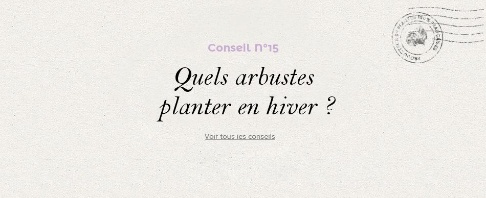 15 - Quels arbustes planter en hiver ?