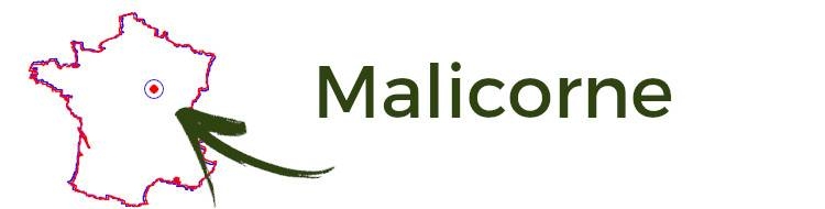 Clematite.net - Malicorne