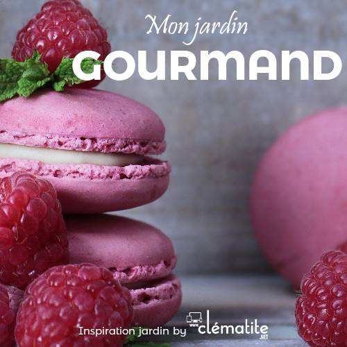 Inspiration by clematite.net - Mon jardin gourmand