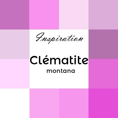 clématite montana ou clématite primeur