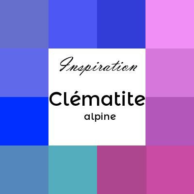 Clématite des Alpes