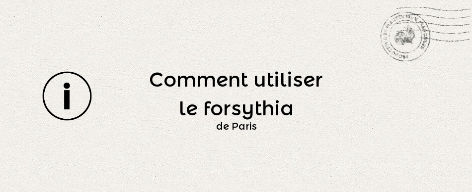 Comment utiliser le forsythia de Paris ?