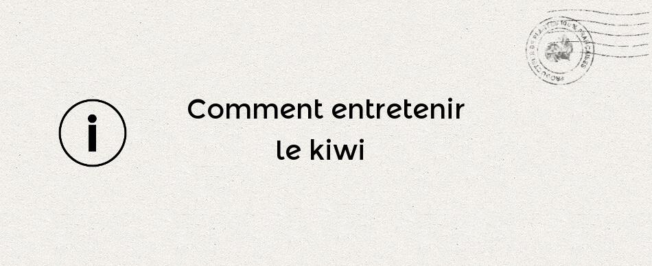 Comment tailler le kiwi